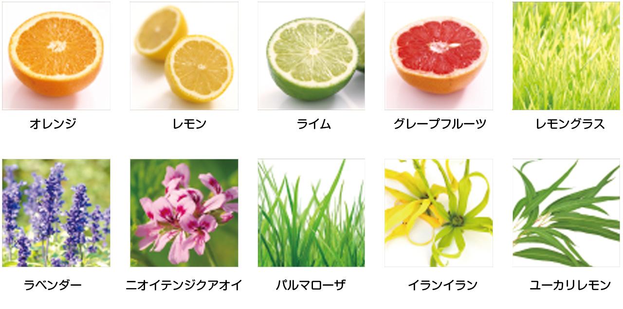 オレンジ レモン ライム グレープフルーツ レモングラス ラベンダー ニオイテンジクアオイ パルマローザ イランイラン ユーカリレモン