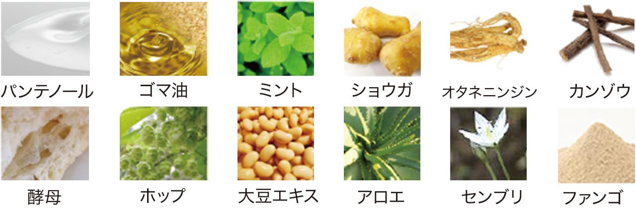 パンテノール ごま油 ミント 生姜 オタネニンジン 甘草 酵母 ホップ 大豆エキス アロエ センブリ ファンゴ