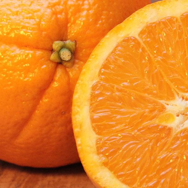オレンジ果皮油